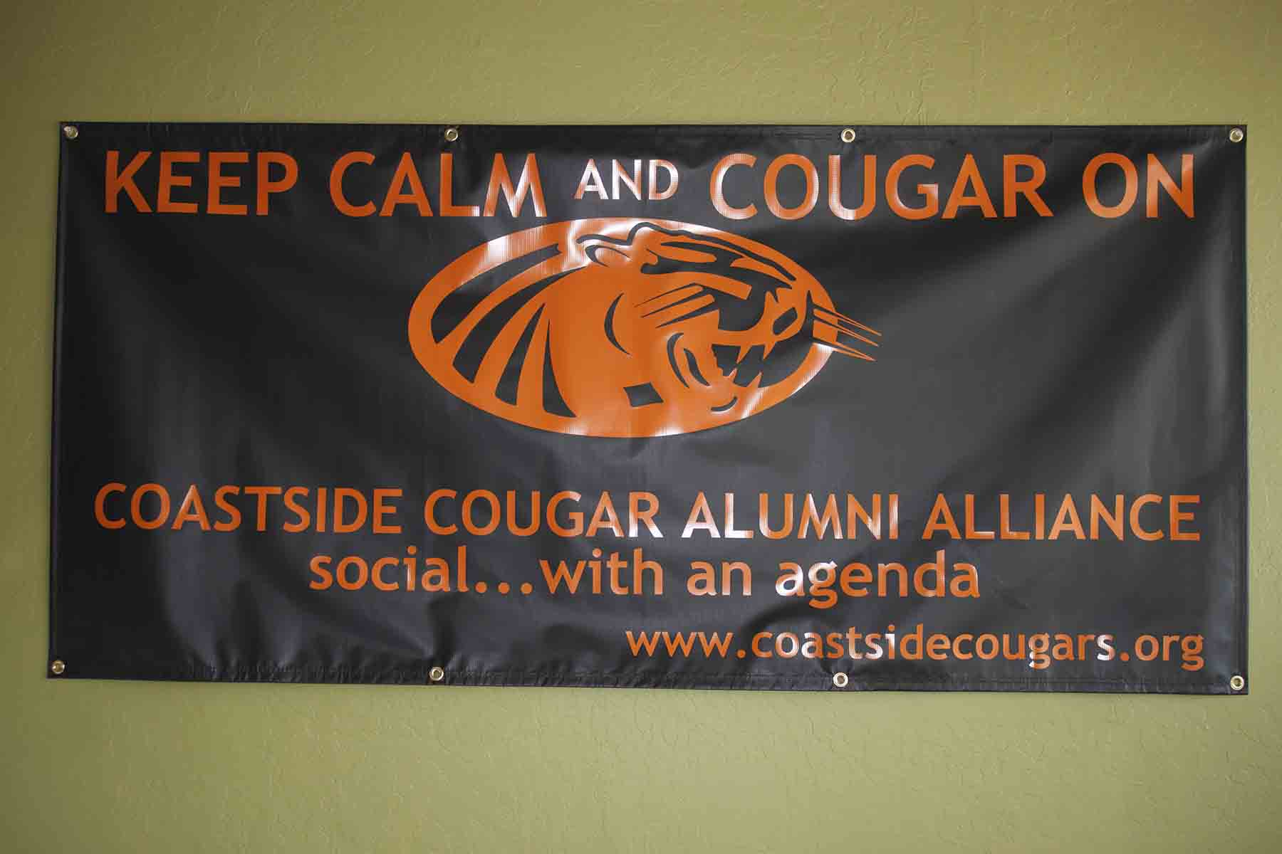 Cougar On