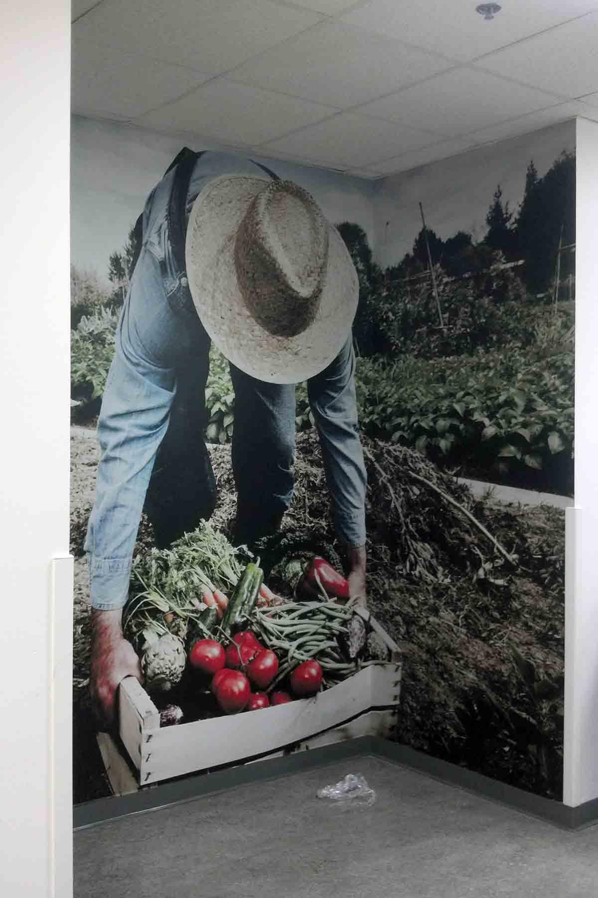 Farmer Wall Graphics
